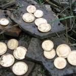 fake metal coins