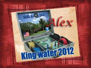 KING WATER 2012 WATER DETECTOR