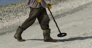 What should be a metal detector to search for gold