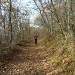 famous trails metal detector-Metal detectors-antique maps-Hunters