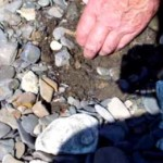 Gold Prospecting With The Fisher F2 Metal Detector Reviews